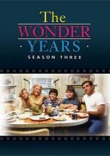 The Wonder Years: Season 3